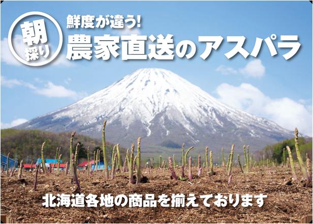 「朝採り」鮮度が違う!農家直送のアスパラ。北海道各地の商品を揃えております。