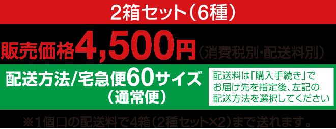4500円